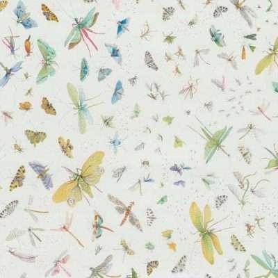 La Serre Aux Papillons Multicolore